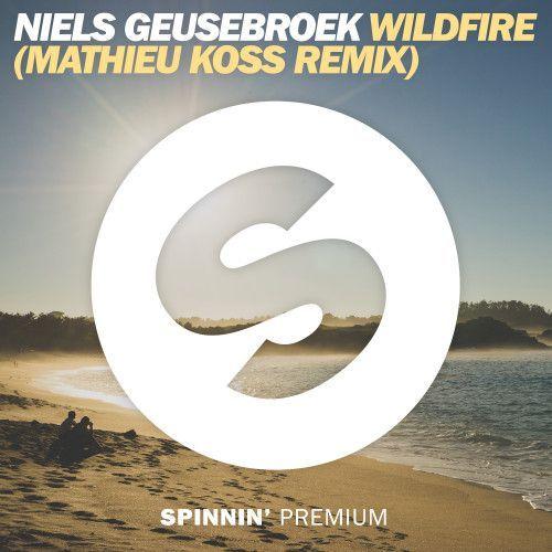 Wildfire (Mathieu Koss remix)