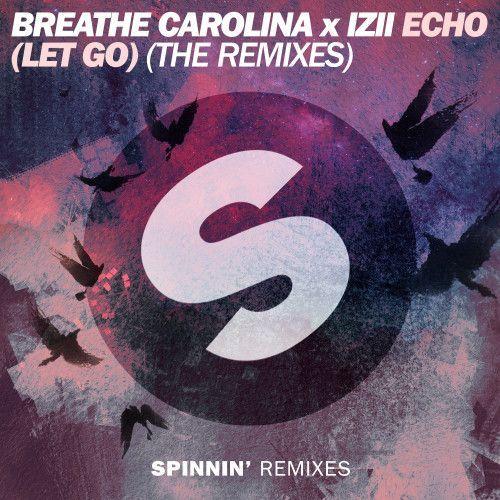 ECHO (LET GO) (The Remixes)